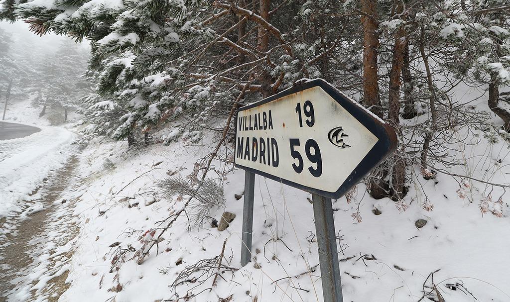 primera-nevada-3