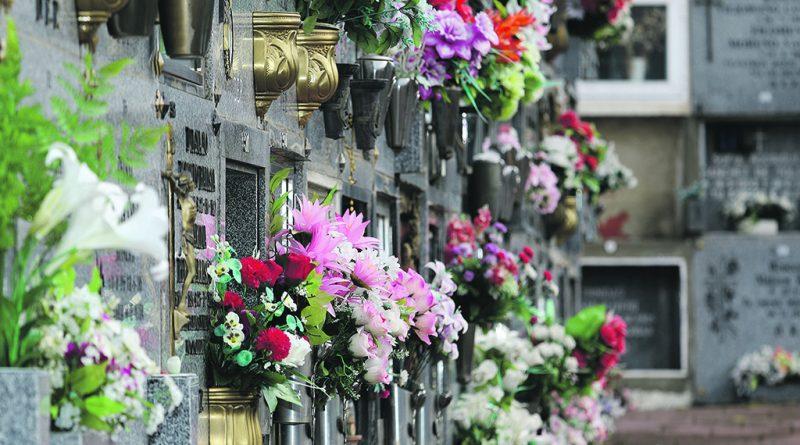cementerio-7-800x445
