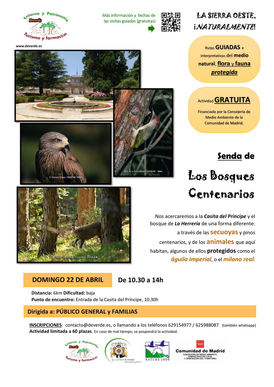 Senda3 Arboles centenarios - CARTEL-1