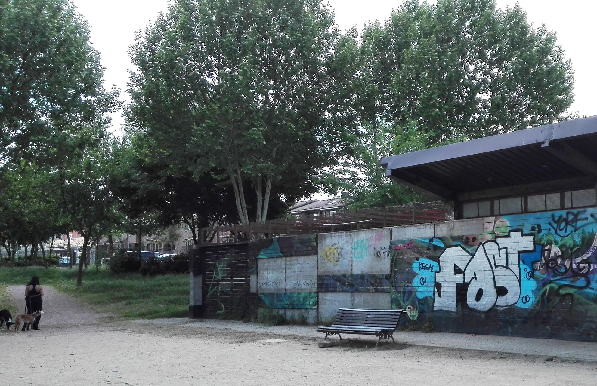 laguna2