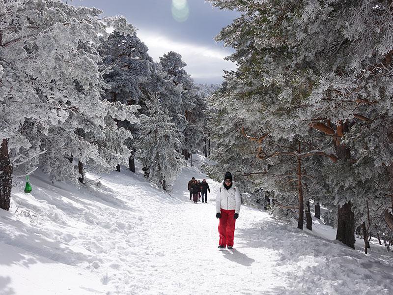 Nieve, montaña y aventura