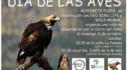 Alpedrete Puede organiza una salida este domingo con motivo del Día de las Aves
