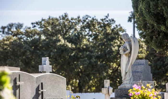 cementerio las rozas