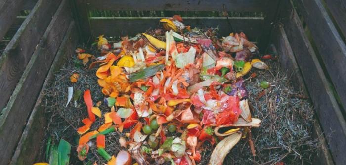 compost moralzarzal