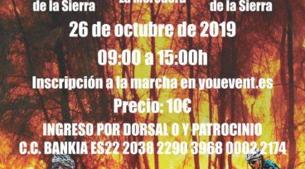 Becerril organiza una marcha cicloturista para la reforestación del Parque Nacional