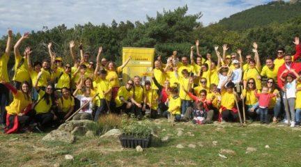Más de 100 voluntarios, empleados de la compañía de transporte y logística DHL, plantan 350 árboles de 50 especies en Navacerrada
