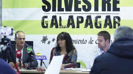 Abierto el plazo de inscripción para participar en la San Silvestre de Galapagar, la segunda más antigua de la Comunidad de Madrid