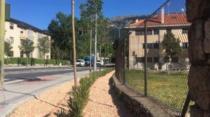 Plantación de nuevos árboles en la avenida Felipe II y la calle Carlos III de El Escorial
