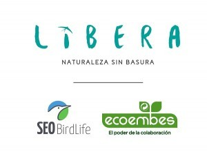 proyecto libera villalba
