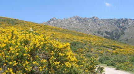 11 actividades para disfrutar de la naturaleza en la Sierra durante la desescalada