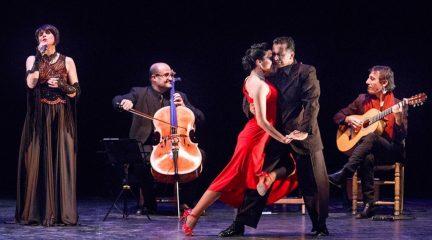"""Hoyo de Manzanares presenta el XXVIII Festival Internacional de Artes Escénicas al aire libre """"Buenas Noches"""""""