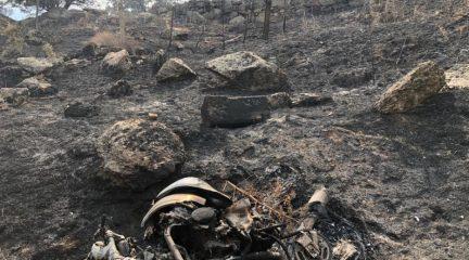Robledo y Zarzalejo reclamarán los daños a la aseguradora de la motocicleta cuyo accidente provocó el incendio que arrasó más de 1.000 hectáreas