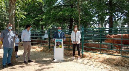 El director general de Agricultura y Ganadería visitó la IV Feria del Ganado en El Escorial