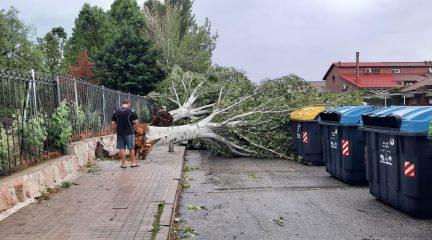 Los servicios municipales de Collado Villalba se afanan en reparar los daños causados por la tormenta del domingo