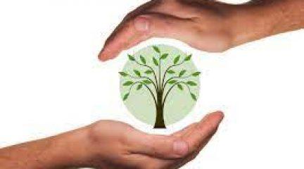 El Ayuntamiento de El Boalo celebra el Día Mundial del Medio Ambiente con actividades para toda la familia