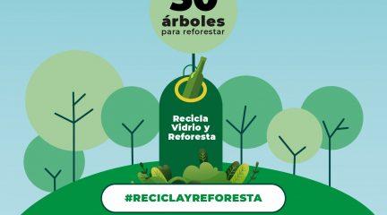 """Ecovidrio y el Ayuntamiento de Galapagar presentan la campaña """"Reciclo y Reforesto"""""""