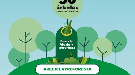 Torrelodones participa en un reto ecológico ciudadano: el que más vidrio recicle podrá plantar 50 árboles