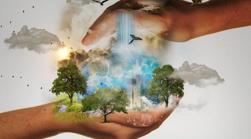 medio-ambiente-protección