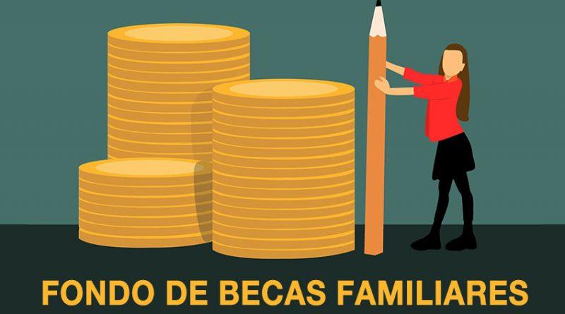 ayudas-familiares