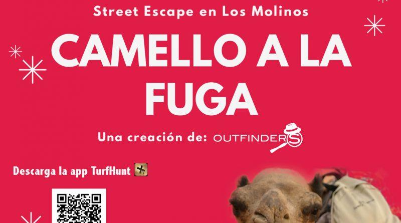Cartel Camello a la fuga Los Molinos